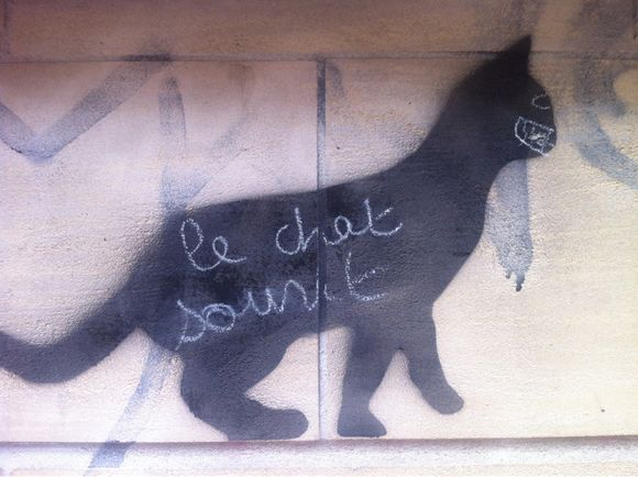 Le chat sourit