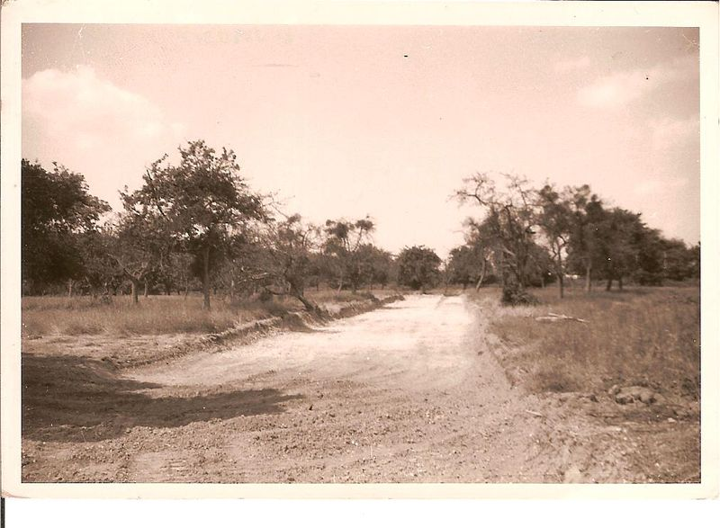 Pas_la_savane_mais_la_grand_mare_oct_68_001
