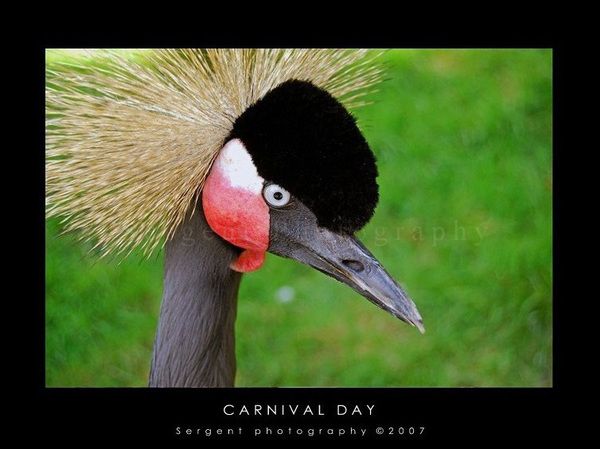 Carnival_day_cleres